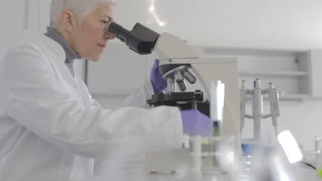 senior female scientist working in laboratory - scientist stock videos & royalty-free footage