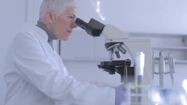 senior female scientist working in laboratory - health and safety stock videos & royalty-free footage