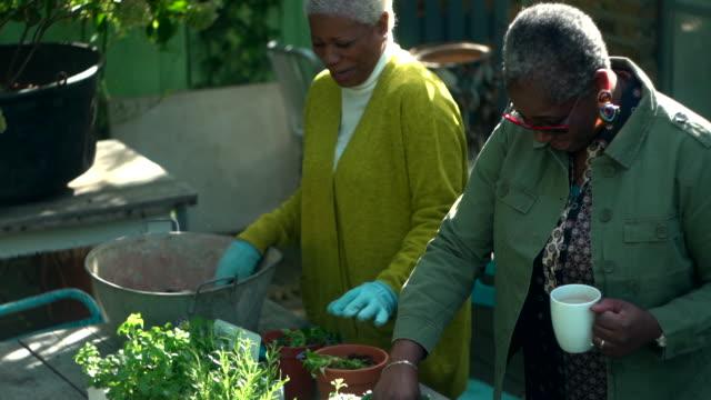 senior females gardening together