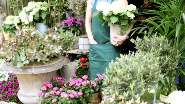 MLS A Senior Florist stands in the doorway of her shop proudly admiring her Flowers