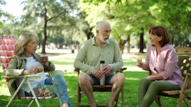 senior friends enjoying mate in park - yerba mate stock videos & royalty-free footage
