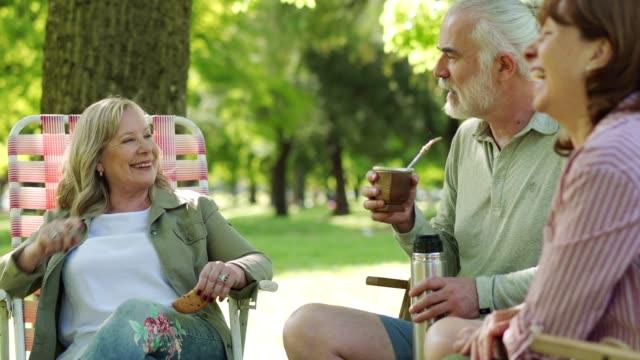 vídeos de stock e filmes b-roll de senior friends enjoying mate in park - sorriso aberto