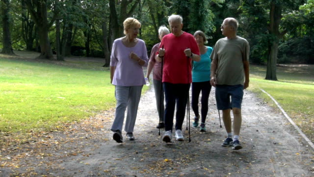 senior friends holding hiking poles while walking in park - power walking stock videos and b-roll footage