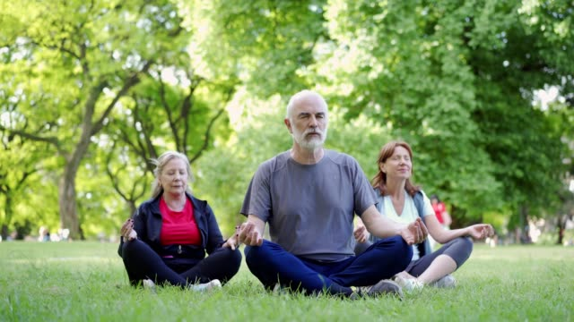 senior friends meditating in park - zen like stock videos & royalty-free footage