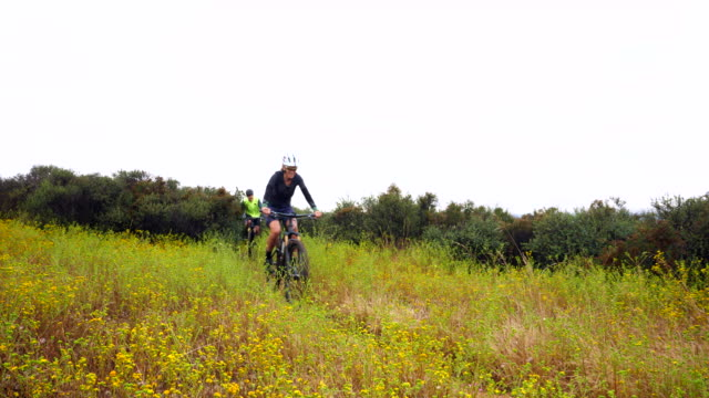 ms senior friends riding mountain bikes on trail through lush hillside - mountainbike bildbanksvideor och videomaterial från bakom kulisserna