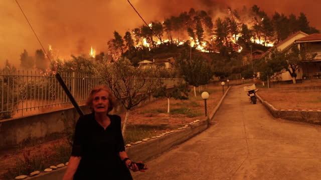 vídeos de stock, filmes e b-roll de senior greek woman shouting on the street as wildfire reaches village of gouves on the island of euboea, greece on sunday, august 8, 2021. - grécia