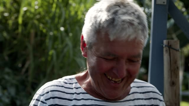 a senior harvests tomatoes in his garden. - komiker stock-videos und b-roll-filmmaterial