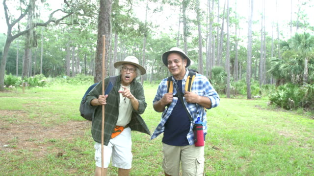 Senior Hispanic man and adult son hiking in a park