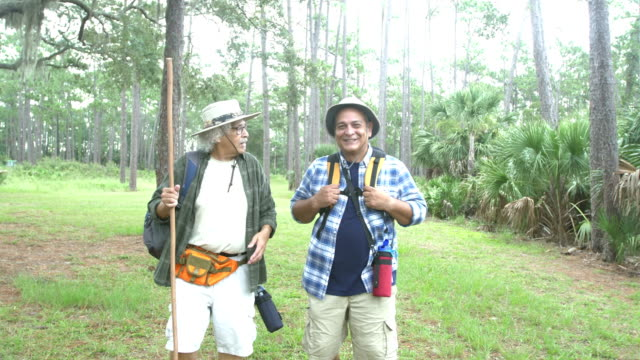 senior hispanic man and adult son hiking in a park - white hair stock videos & royalty-free footage