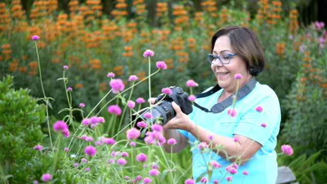 senior hispanic woman in park photographing flowers - hobbies stock videos & royalty-free footage