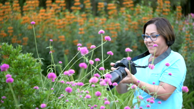 senior hispanic woman in park photographing flowers - 60 64 years stock videos & royalty-free footage