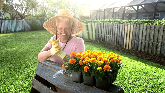 senior hispanic woman putting on gardening gloves - active seniors stock videos & royalty-free footage