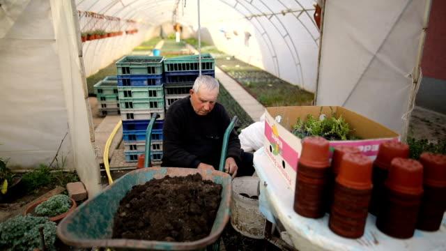 stockvideo's en b-roll-footage met senior in tuin - kleine groep dingen
