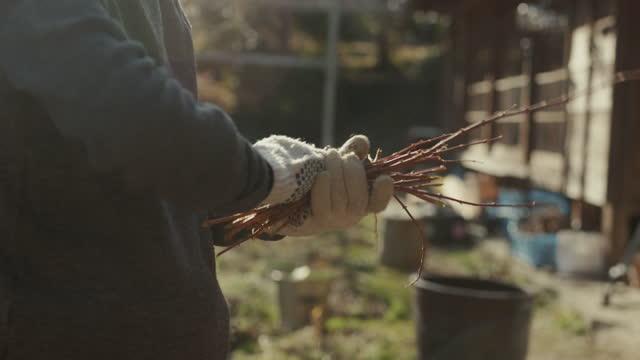 火事のために木を壊すスロモcu-シニア日本人女性 - 木こり点の映像素材/bロール