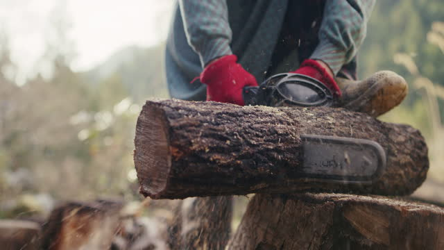 slo mo cu - チェーンソーで丸太を切る日本人女性の先輩 - 木こり点の映像素材/bロール