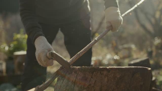 スロモcu-アックスで木を切る日本人女性の先輩 - 木こり点の映像素材/bロール