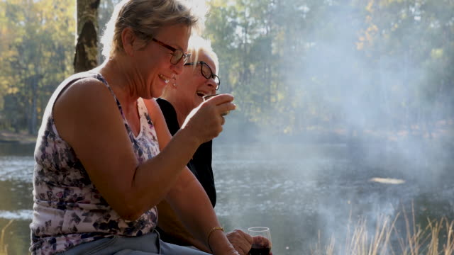 senior ladies barbecuing outdoors - sweden stock videos & royalty-free footage