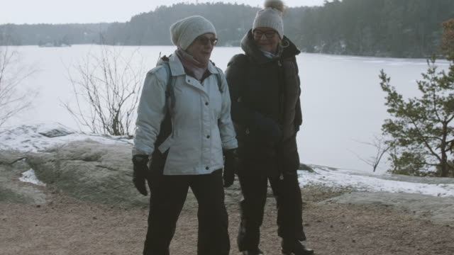 senior ladies walking in forest - retirement stock videos & royalty-free footage