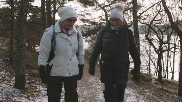 senior ladies walking in forest - frost stock videos & royalty-free footage