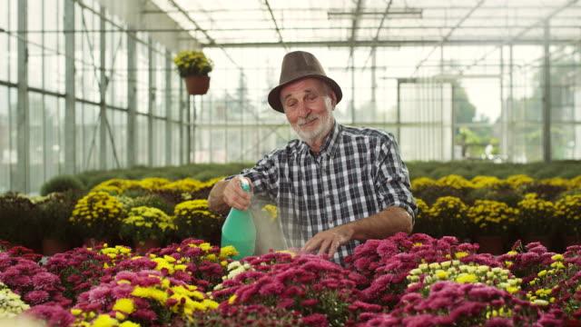 vídeos y material grabado en eventos de stock de floreria masculino senior - vendor