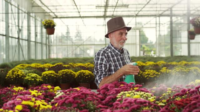 Senior male florist