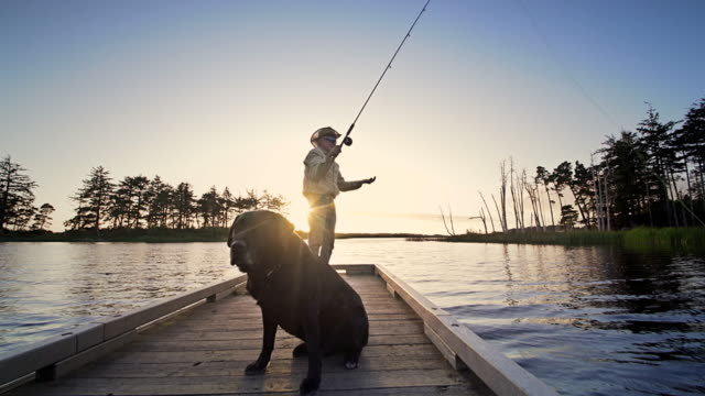 senior man and his dog fly fishing off dock, oregon - fishing stock videos & royalty-free footage