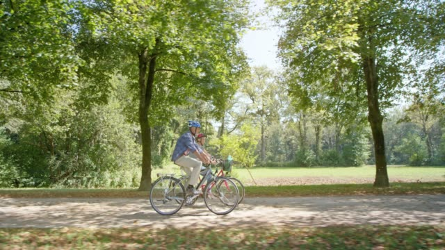 TS Senior man and woman cycling in the park through an avenue of trees on a sunny day
