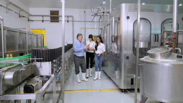 senior man and worker women checking bottles on production line in bottle factory - food processing plant stock videos & royalty-free footage