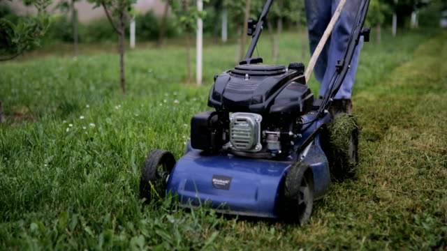senior man cutting grass with lawnmower in the orchard - tagliaerba video stock e b–roll