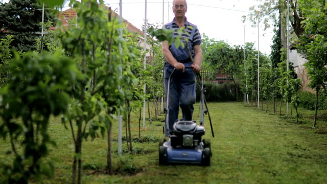 senior man cutting grass with lawnmower in the orchard - lawn stock videos & royalty-free footage