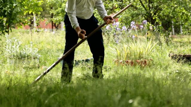 vídeos y material grabado en eventos de stock de hombre mayor cortando hierba fresca verde con la uña - césped