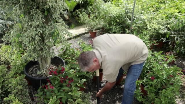 senior man digging in garden - sweat stock videos & royalty-free footage