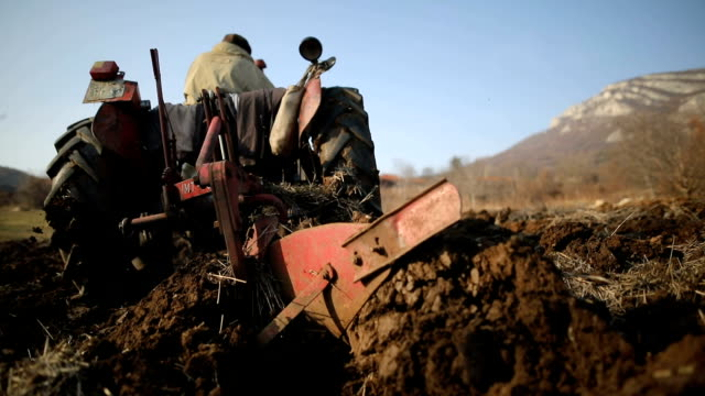 vídeos y material grabado en eventos de stock de senior man driving tractor pequeño y arar campo. actividad agrícola - grano planta