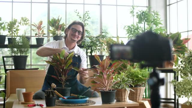 senior man filming vlogging video in florist shop, senior youtuber - craft stock videos & royalty-free footage