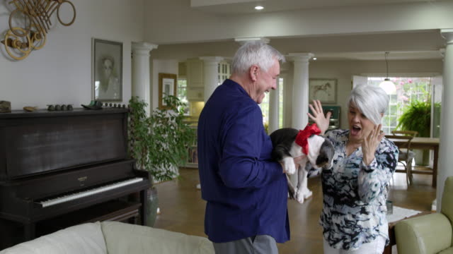 Senior man giving a puppy as gift to senior woman
