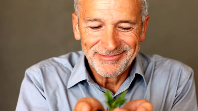 Senior man holding a little growing green plant