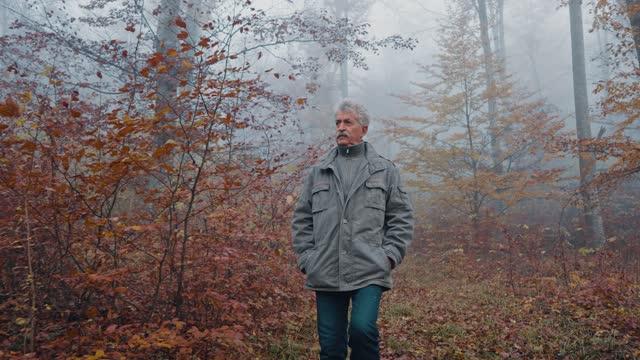senior man in autumn walk - mindfulness stock videos & royalty-free footage