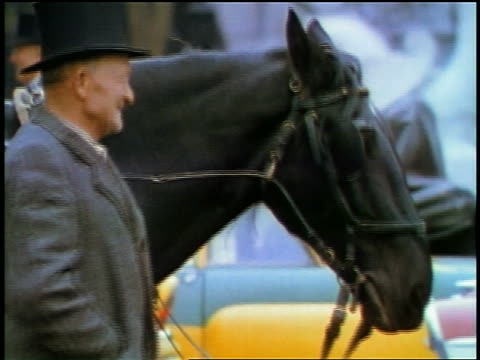 1957 senior man in hat standing next to horse outdoors - 1957 stock videos & royalty-free footage