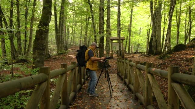 Senior man photographing nature in autumn