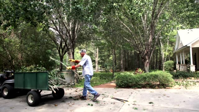Senior man picks up tree limbs from yard.  Time Lapse.
