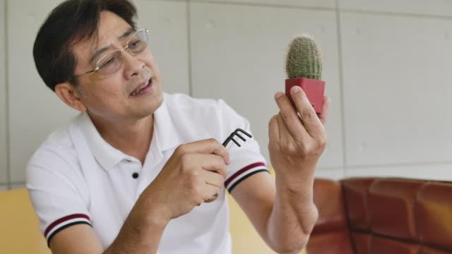 vidéos et rushes de homme aîné plantant l'arbre dans le pot minuscule comme cactus avec le bonheur - cactus pot