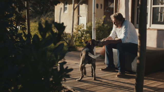 senior man playing with dog on patio - candid stock videos & royalty-free footage