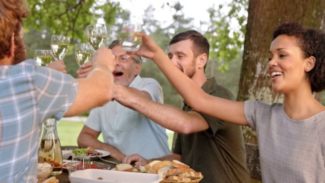senior man proposing a toast at the picnic table - picnic table stock videos and b-roll footage