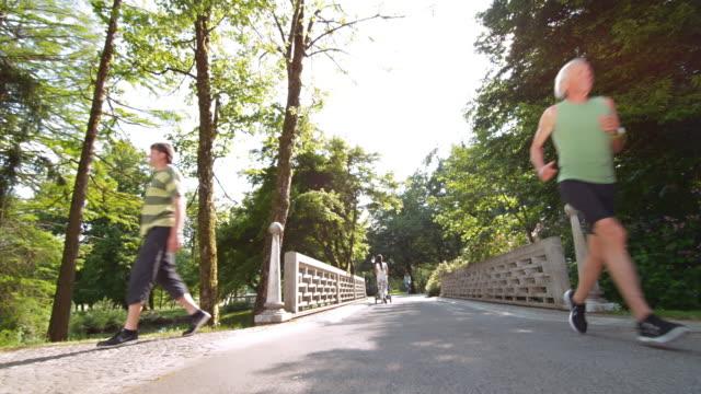 stockvideo's en b-roll-footage met ds senior man loopt over een brug in het park - landweg