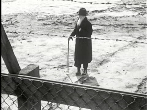 ms, ha, b/w, senior man standing behind barbed wire fence, usa - konzentrationslager stock-videos und b-roll-filmmaterial