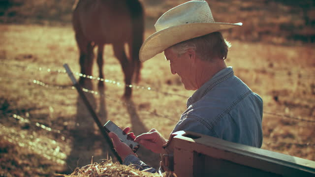 cu senior man texting on his phone outdoors - horse family stock videos & royalty-free footage