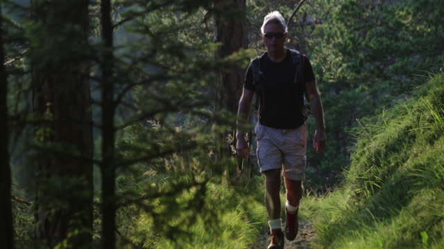 senior man trail hiking in a mountain forest - athleticism stock videos & royalty-free footage