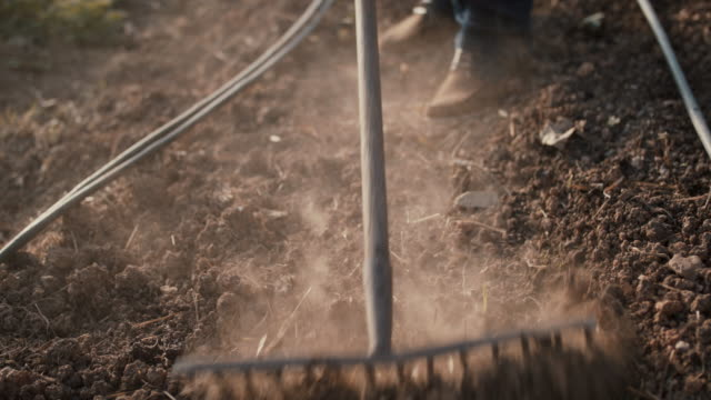 senior man turning dirt with rake in greenhouse - dust stock videos & royalty-free footage