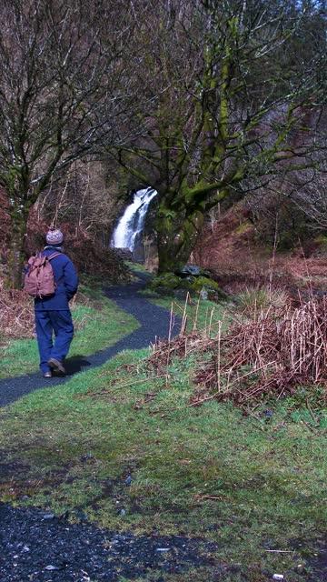 senior man walking towards a waterfall - johnfscott stock videos & royalty-free footage
