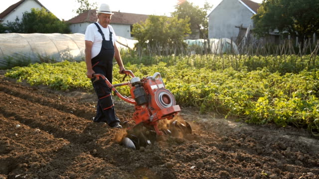 senior man working with cultivator - plowing stock videos & royalty-free footage